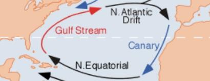 corriente-marina-fria-canarias